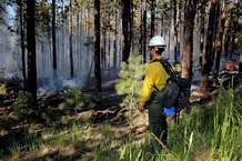 A National Park Service firefighter keeps an eye on the Cajete fire Thursday as it runs along State Highway 4 in the Jemez Mountains in New Mexico.